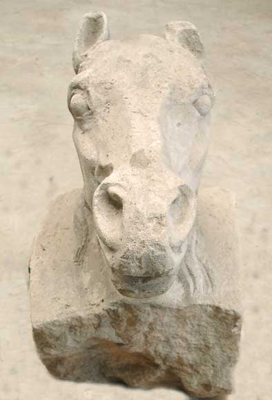 Horse's head sculpted in limestone - Reference 0512