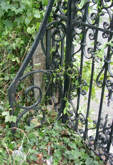 Wrought iron gate with 20 meters of railing-3