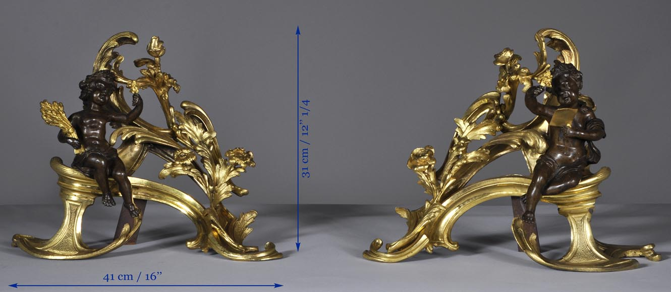 Beautiful pair and antique Louis XV period andirons with Summer Allegories made out of gilded bronze and brown patina bronze-8