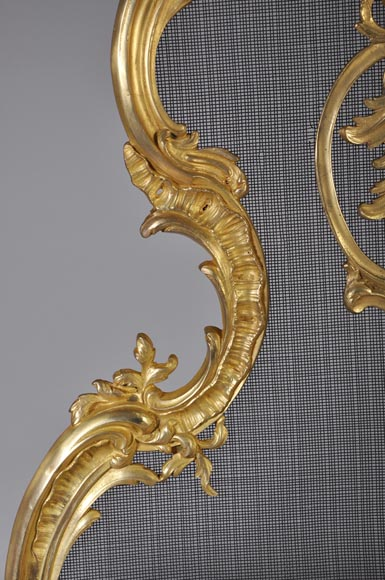 Antique Louis XV style gilt-bronze fire screen, 19th century, foliages and flowers decor-3