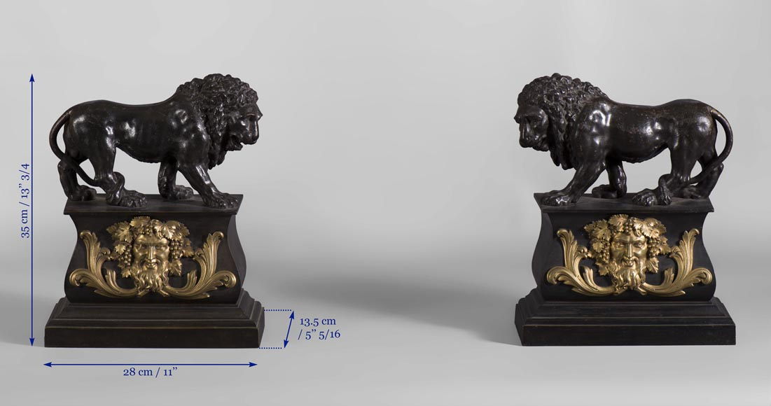 Pair of antique andirons in patinated bronze and gilt bronze with lions and Bacchus' masks, from 19th century.-7