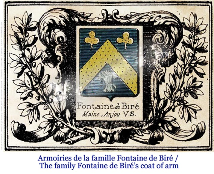 Antique 18th-century fireback with the coat of arms of the Fontaine de Biré family-7