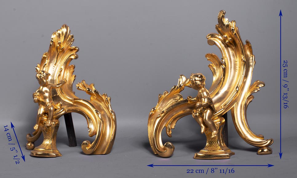 Pair of Louis XV style gilded bronze andirons decorated with putti-12
