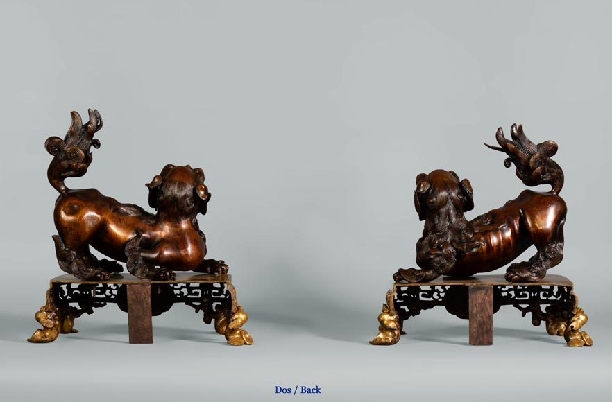 Beautiful antique pair of andirons with Foo dogs, gilt bronze and brown patina bronze-8