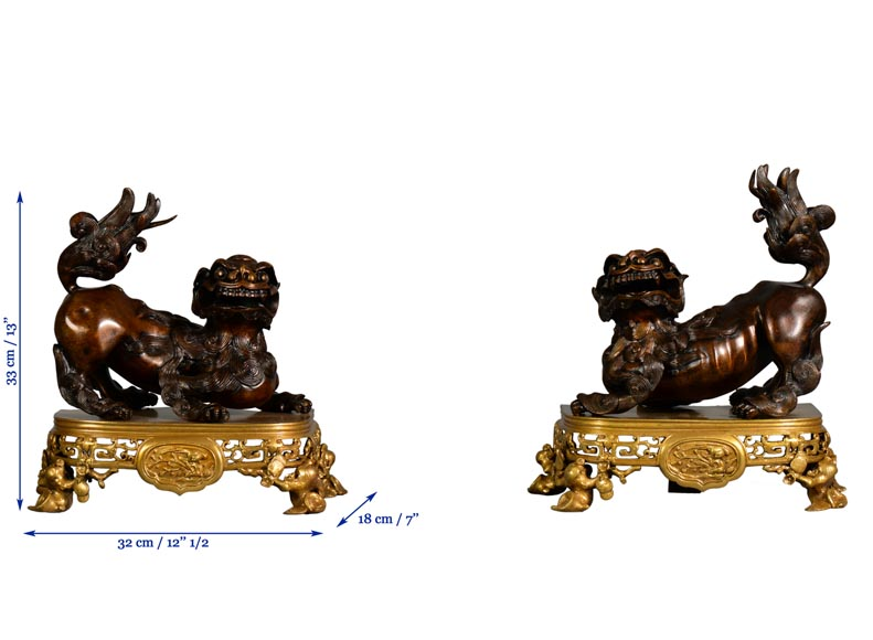 Beautiful antique pair of andirons with Foo dogs, gilt bronze and brown patina bronze-9
