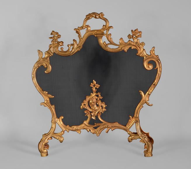 Beautiful antique gilt bronze Louis XV style firescreen with flowers decor - Reference 10789