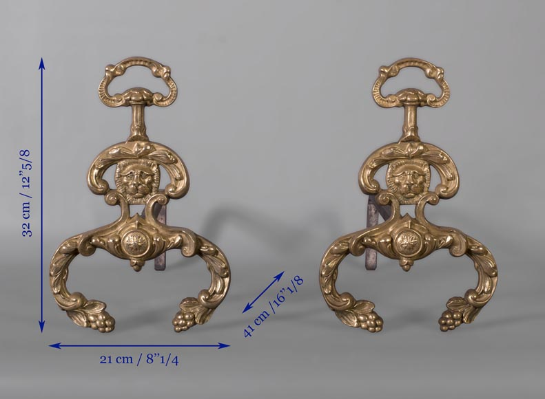 Beautiful pair of antique Napoleon III style andirons in varnished bronze with lion heads-5