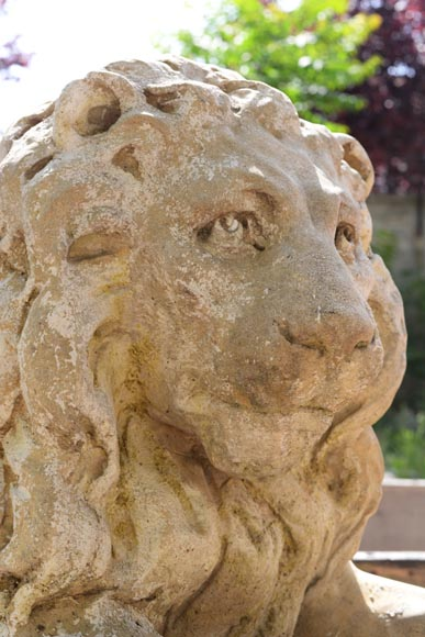 Important pair of statues with majestic lions made of composit stone-3