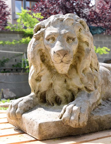 Important pair of statues with majestic lions made of composit stone-9