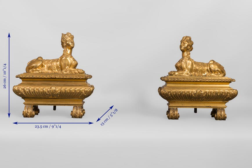Pair of chenets with sphinges, Regency style, in gilded bronze-6