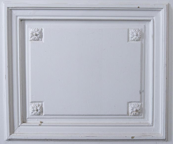 Set of 12 single doors in the Regency style-3