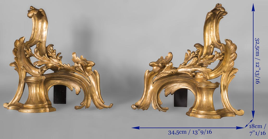 Pair of Louis Xv style chenets, in gilded bronze-6