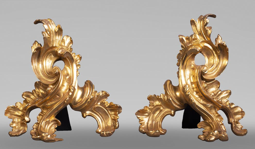 Pair of gilt bronze andirons with foliage-0