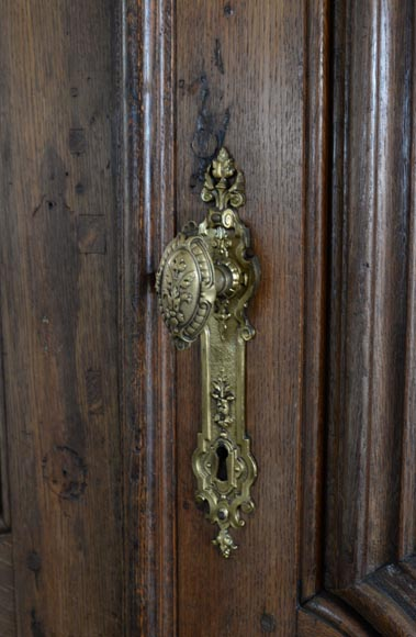 Double door in carved oak in Napoleon III style-6