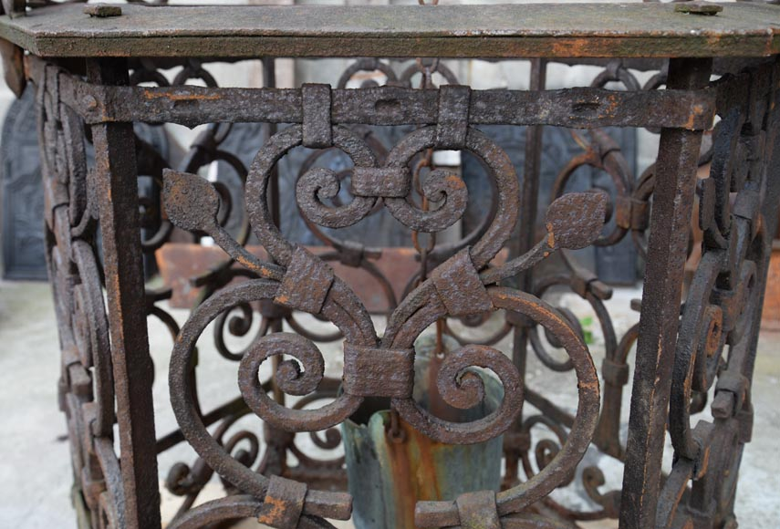 Rare antique 19th century well in cast iron and wrought iron-8
