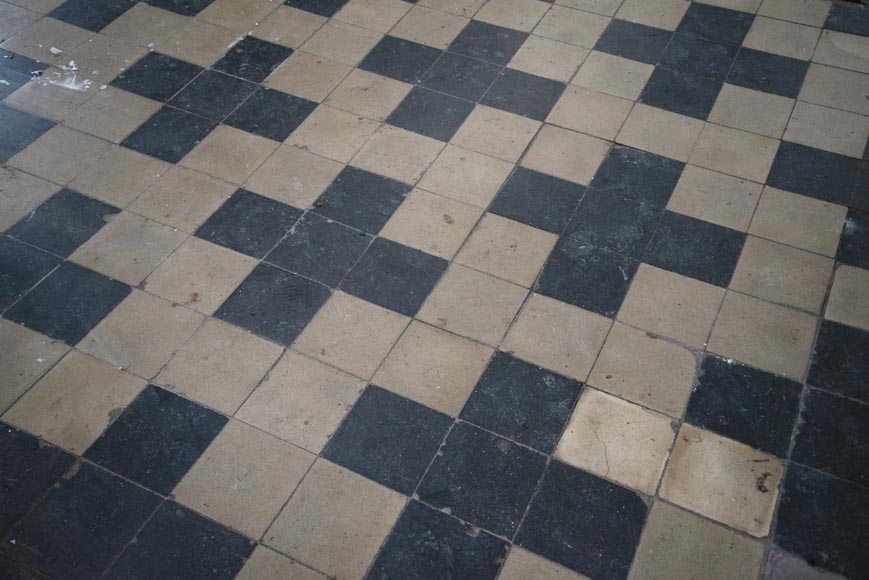 Antique black and white cement tile floor from the 19th century-0