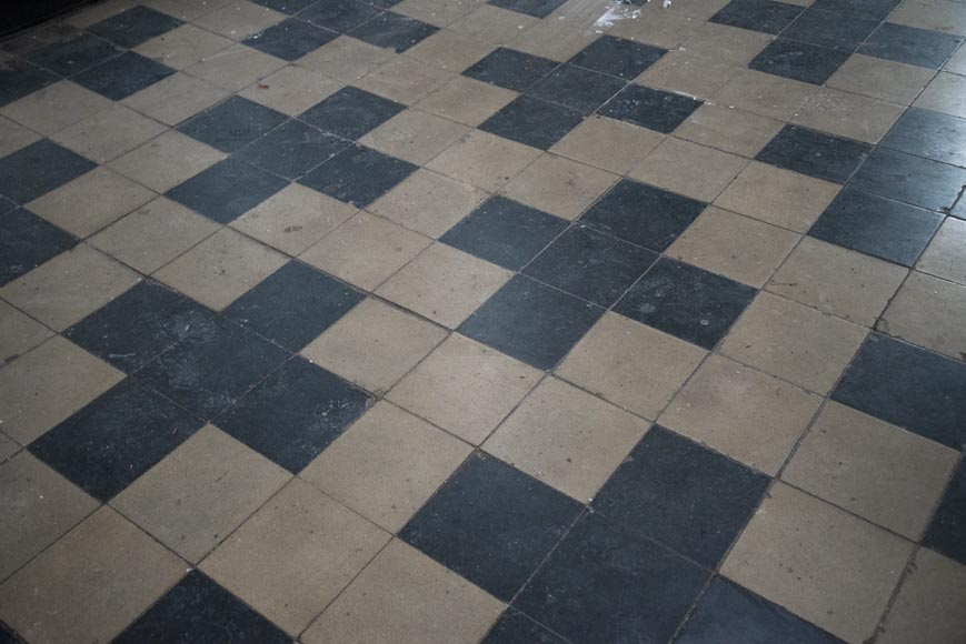 Antique black and white cement tile floor from the 19th century-1