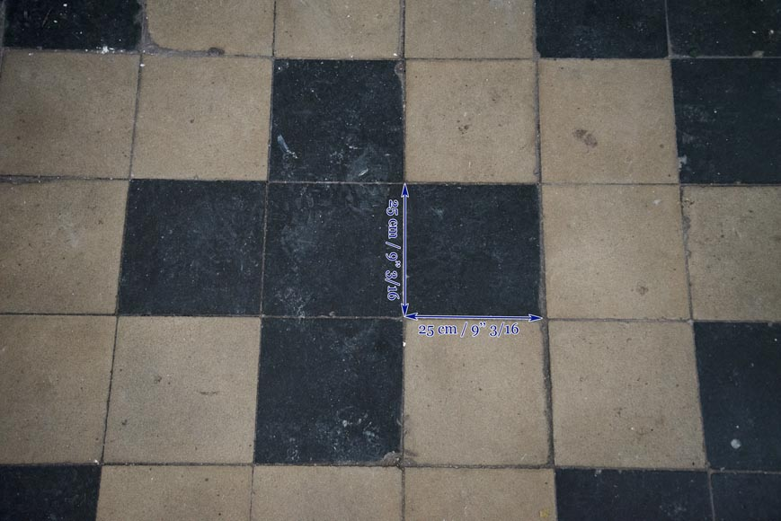 Antique black and white cement tile floor from the 19th century-2