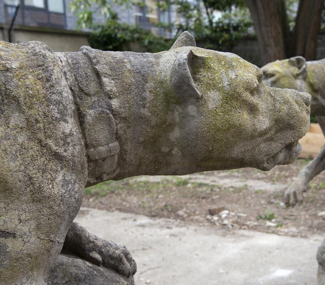 Pair of composite stone fighting dog statues-3