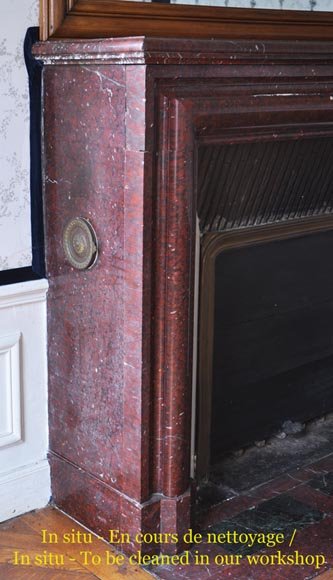 Antique Louis XIV style fireplace made out of Griotte Red marble-2