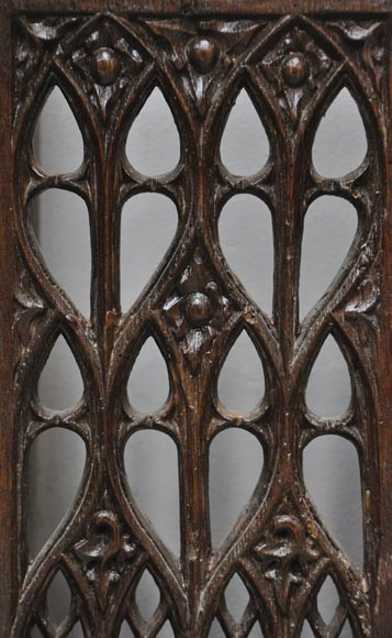 Beautiful antique Neo-Gothic style carved oak door, 19th century-5