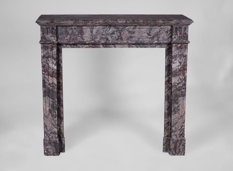 Antique Louis XVI style fireplace with flutings in Bois Jourdan marble-0