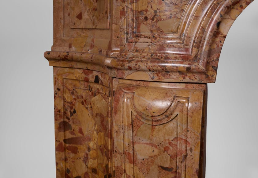 Rare antique Regence period fireplace in Aleppo Breccia marble with its original cast iron insert-4