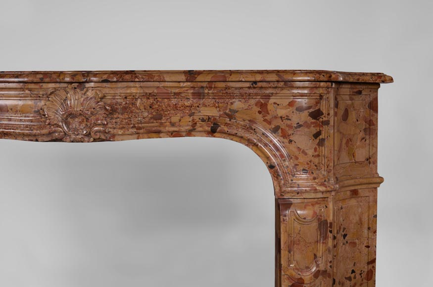 Rare antique Regence period fireplace in Aleppo Breccia marble with its original cast iron insert-7
