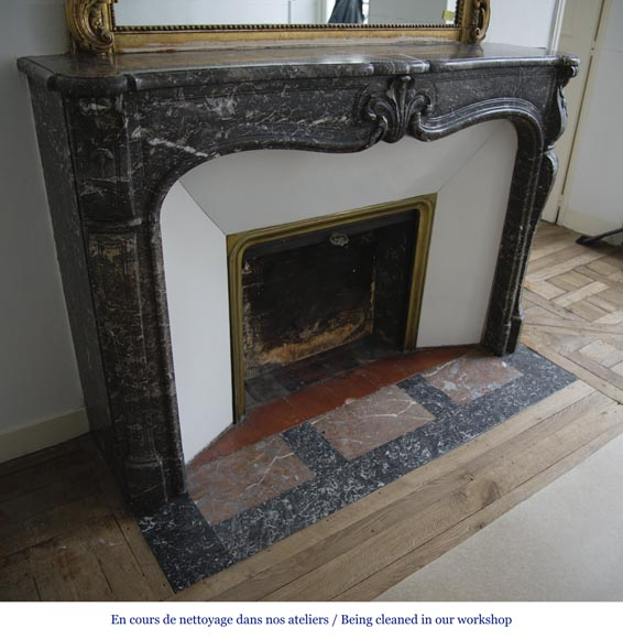 Antique Louis XV period fireplace in Grey Sainte Anne marble, 18th century-2