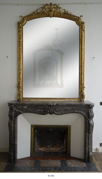 Antique Louis XV period fireplace in Grey Sainte Anne marble, 18th century-7