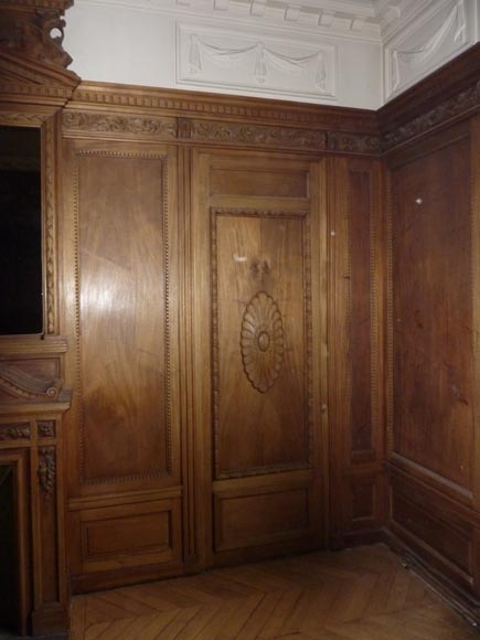 Napoleon III style paneled room with fireplace and mirror, chimeras decor, in carved wood-2