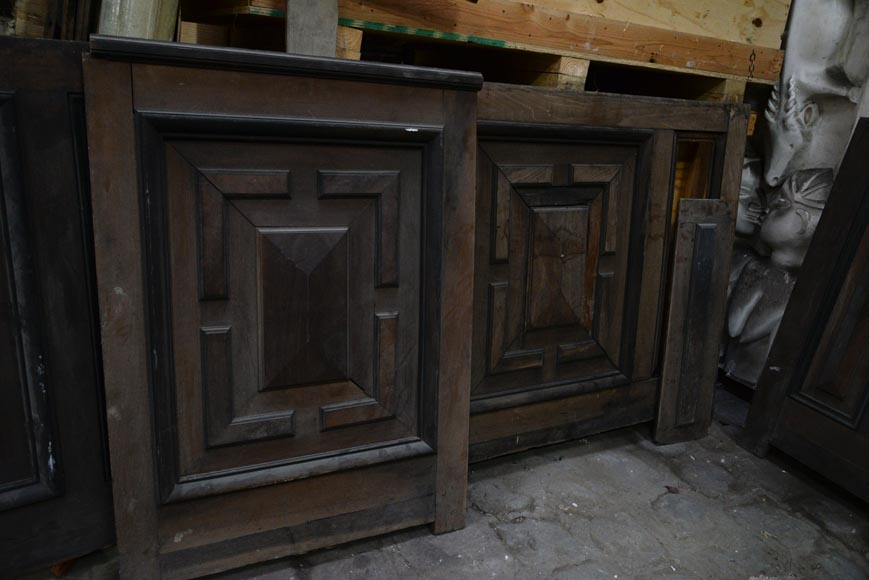 Antique Napoleon III style set of panels in oak and blackened pearwood with paneled decoration-7