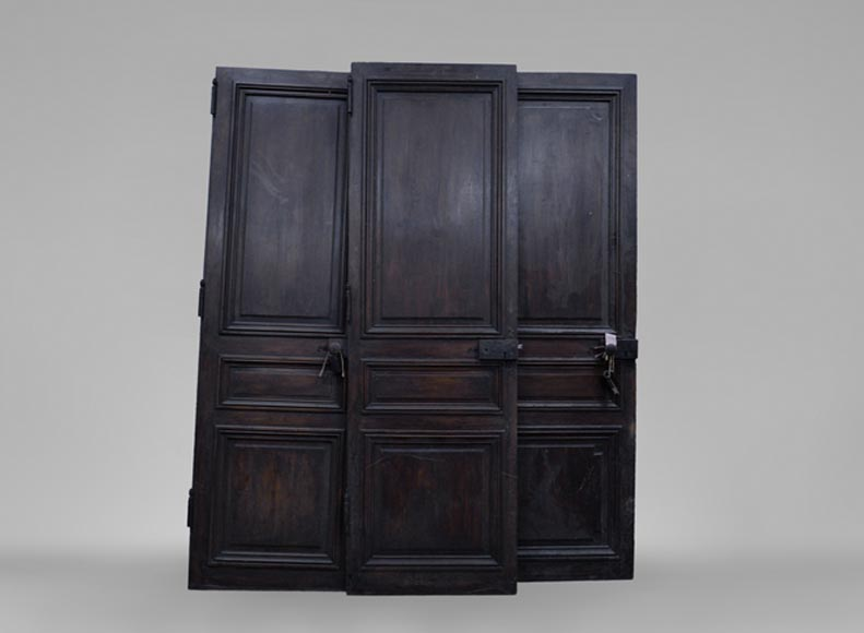 Three antique Napoleon III style simple doors in wood with a paneled decor-0