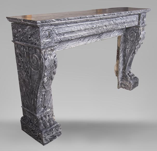 An antique Napoleon III style fireplace, with lion's paws, made out of Bleu Tigré marble-2