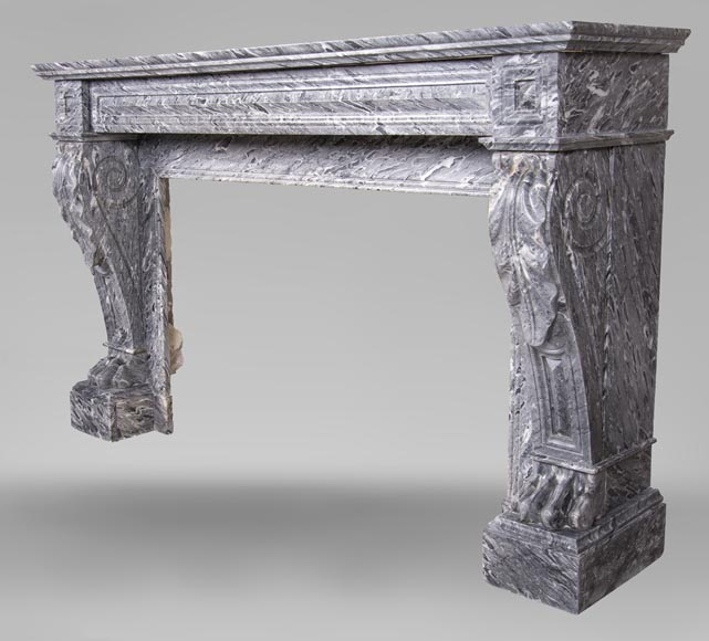 An antique Napoleon III style fireplace, with lion's paws, made out of Bleu Tigré marble-6