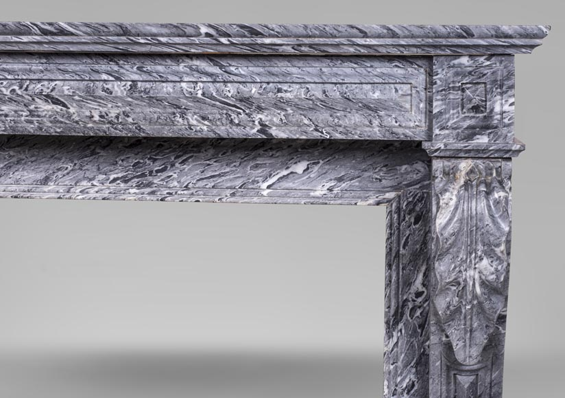 An antique Napoleon III style fireplace, with lion's paws, made out of Bleu Tigré marble-7
