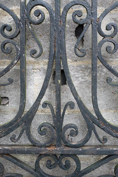 Important ironwork gate adorned with volutes-3