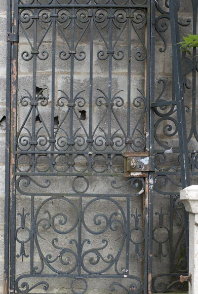 Important ironwork gate adorned with volutes-5