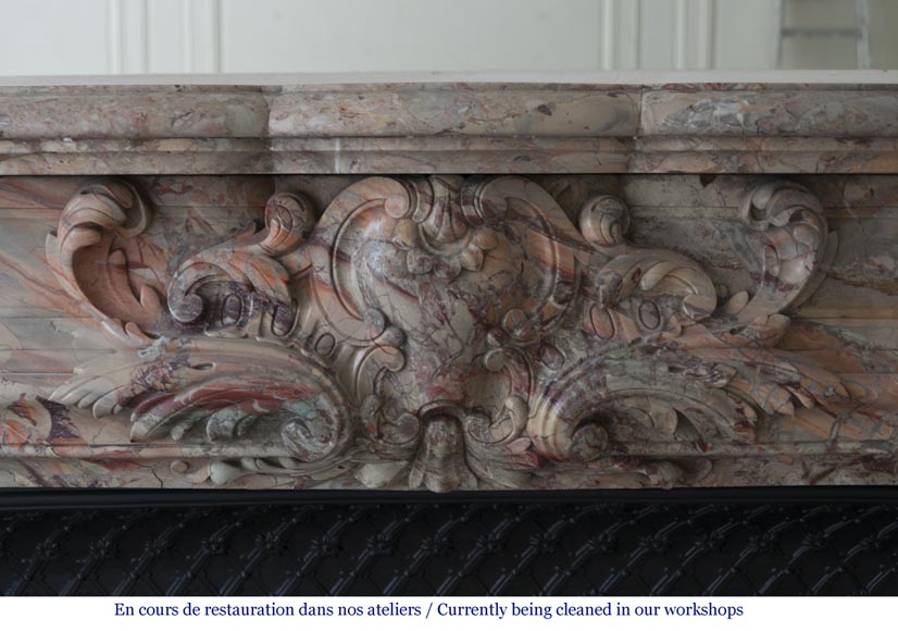 An exceptional Louis XV style fireplace made out of Sarrancolin marble with foliage and shells-1