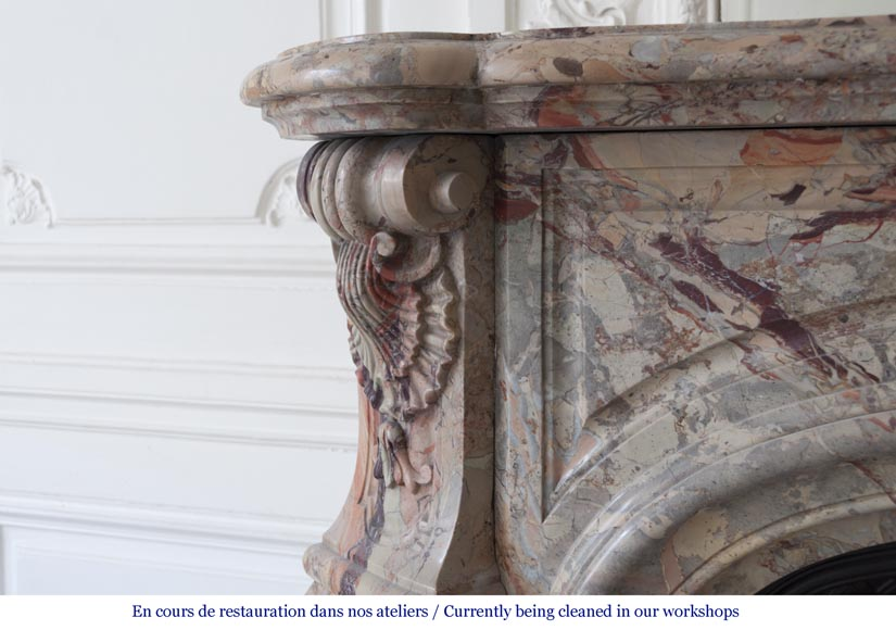 An exceptional Louis XV style fireplace made out of Sarrancolin marble with foliage and shells-7
