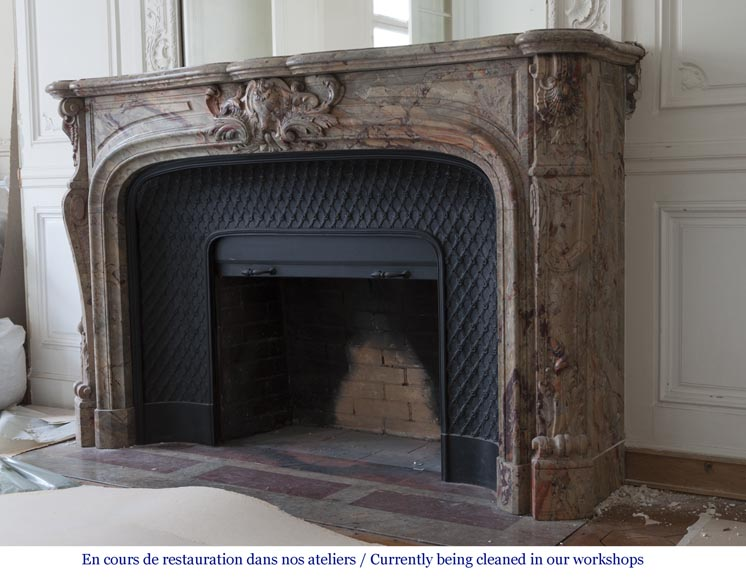 An exceptional Louis XV style fireplace made out of Sarrancolin marble with foliage and shells-9