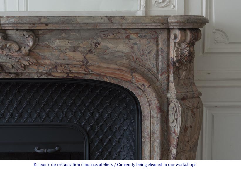 An exceptional Louis XV style fireplace made out of Sarrancolin marble with foliage and shells-10