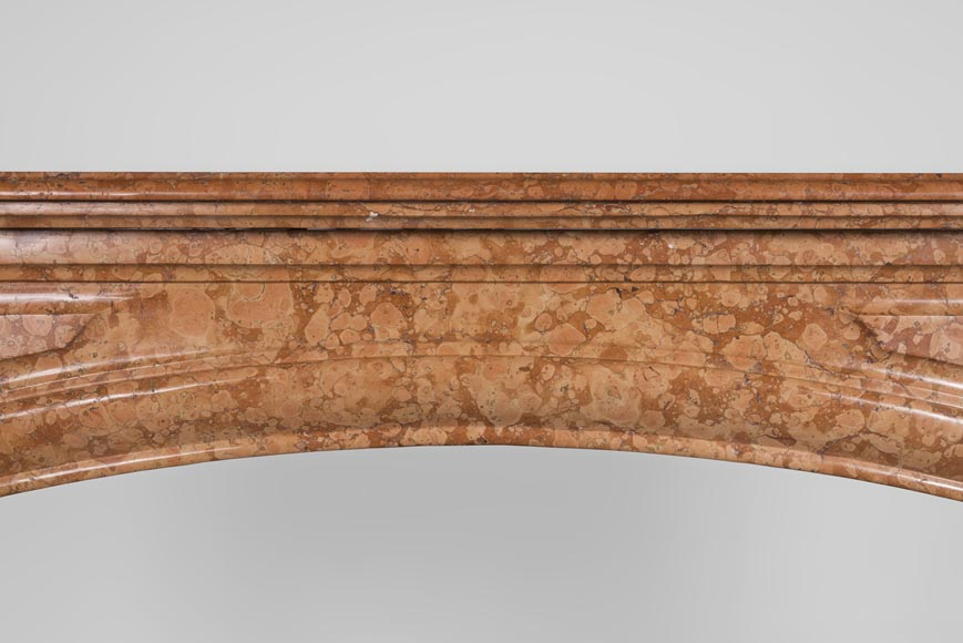 An antique Louis XIV style fireplace made out of Rosso di Verona marble-1