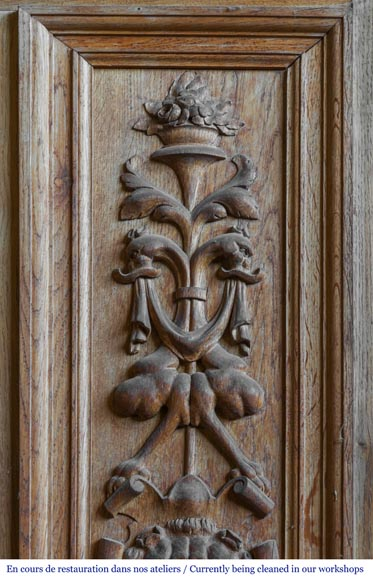 A beautiful set of carved wood two doors and dadoes-3