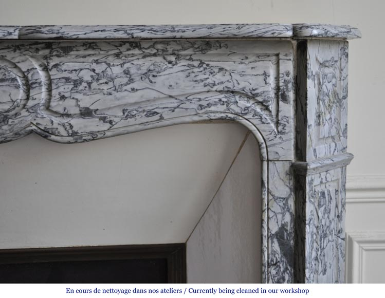 An antique Louis XV style fireplace, Pompadour model, made out of Bleu Fleuri marble-6