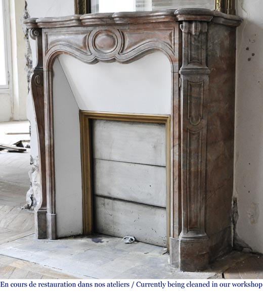 Antique Louis XV style fireplace, Pompadour model made out of Enjugerais marble-4