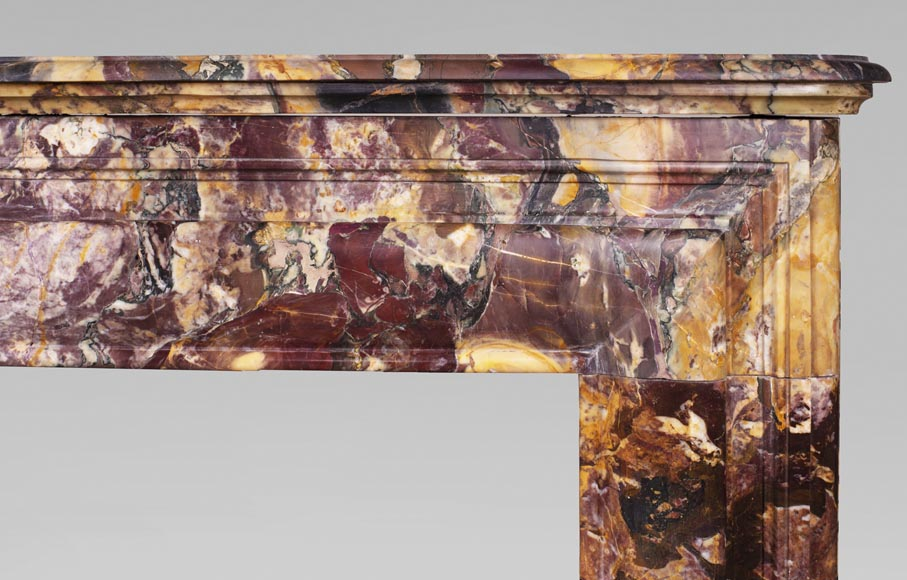 Antique Louis XIV style mantel in Breche de Médous marble-6