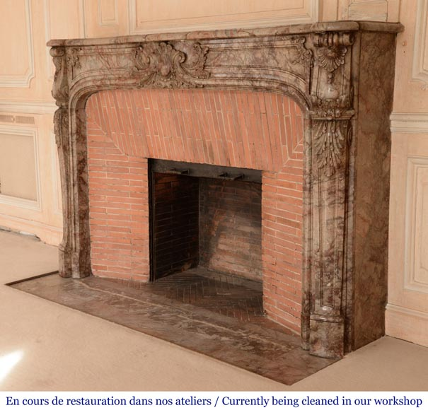 Antique Regence style mantel in Sarrancolin Ilhet marble-9