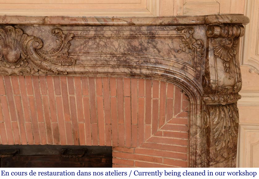 Antique Regence style mantel in Sarrancolin Ilhet marble-10