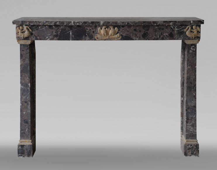 Antique Empire style mantel in Breche de Waulsort and alabaster decors-0